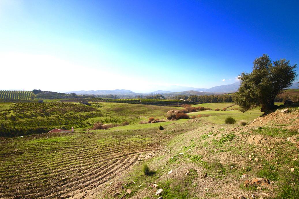 0-bed-Land Plot for Sale in Villafranco del Guadalhorce