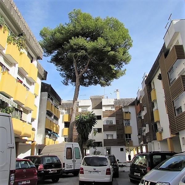 San Pedro Apartments: Apartments For Sale In San Pedro De Alcántara