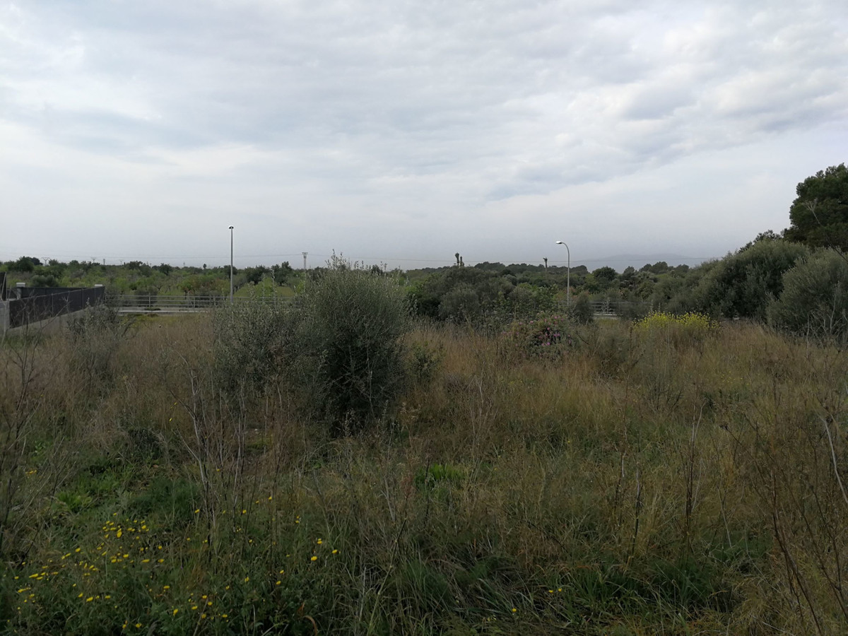 Land is 441 m2 in Sa Vina de Son Very can be built paired or single family, well connected, all serv,Spain
