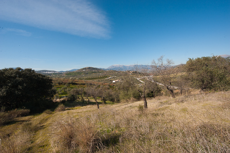 R112242: Plot for sale in Coín