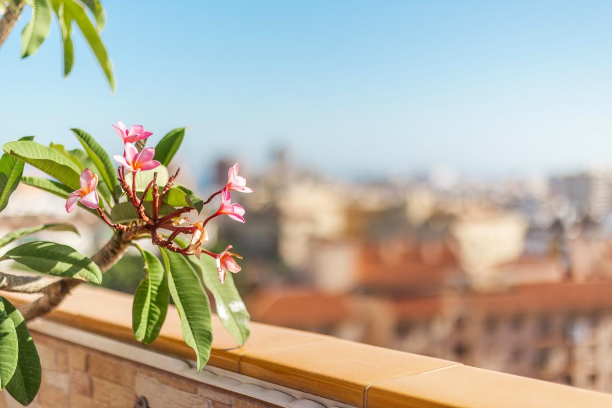 Apartment Penthouse Fuengirola Málaga Costa del Sol R3511432 10