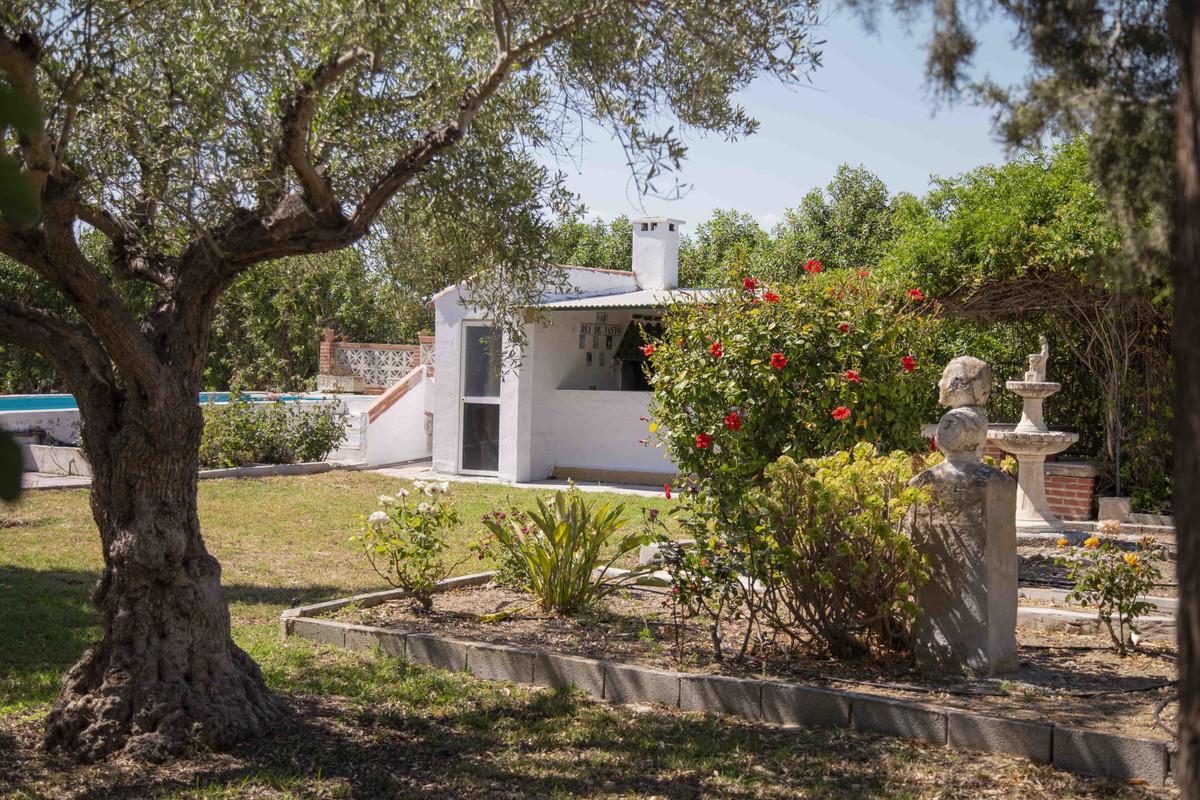 House in Alhaurín el Grande R3539386 50