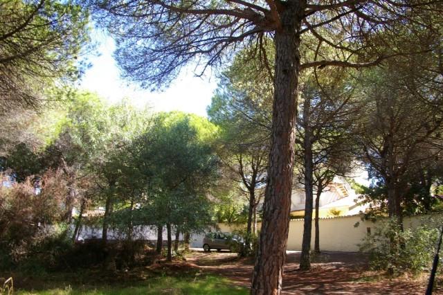 Residential Plot for sale in Marbesa - Marbella East Residential Plot - TMRO-R137813