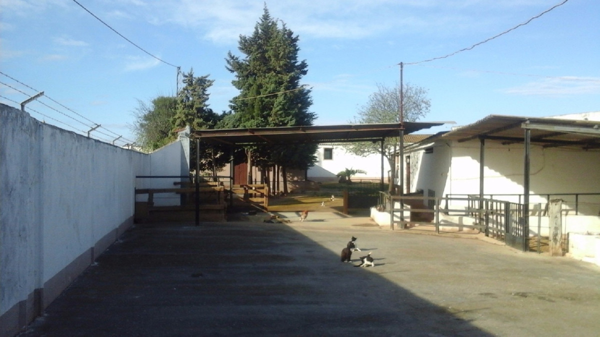 RUSTIC FINCA with small house located at 200 MTS FROM CAMPILLOS.  Large plot of 1.221 m2 with a tota,Spain