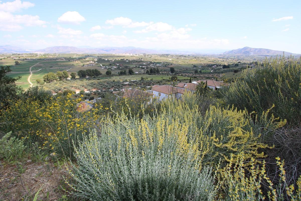 Plot  Land for sale   in Coín