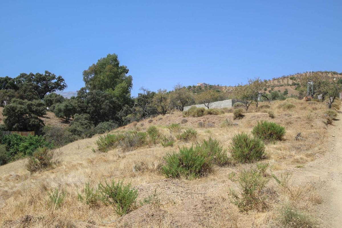 Plot, Land  for sale    en Tolox
