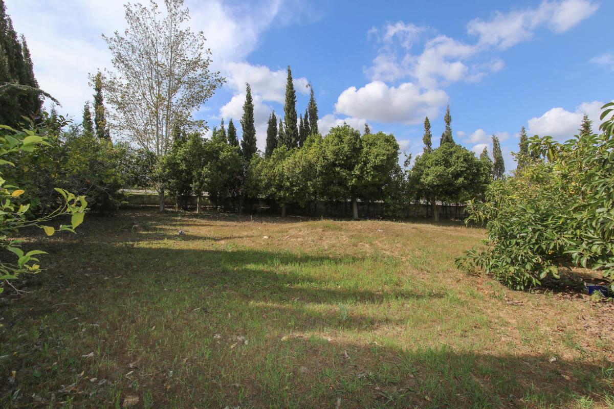 House in Alhaurín de la Torre R3387916 47