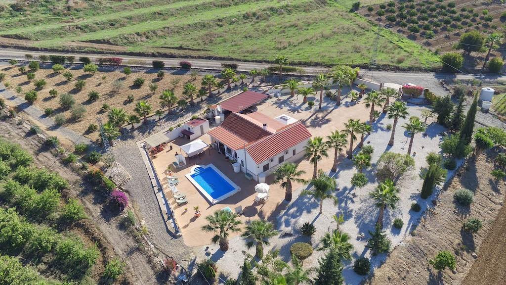 A beautifully landscaped plot with palm trees and subtropical plants dotted around the main outside ,Spain