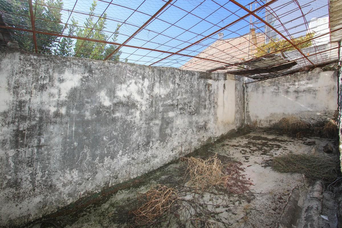 Plot in Tolox