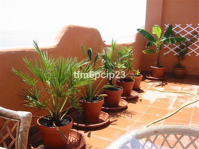 Apartment en Casares Playa R38446 13