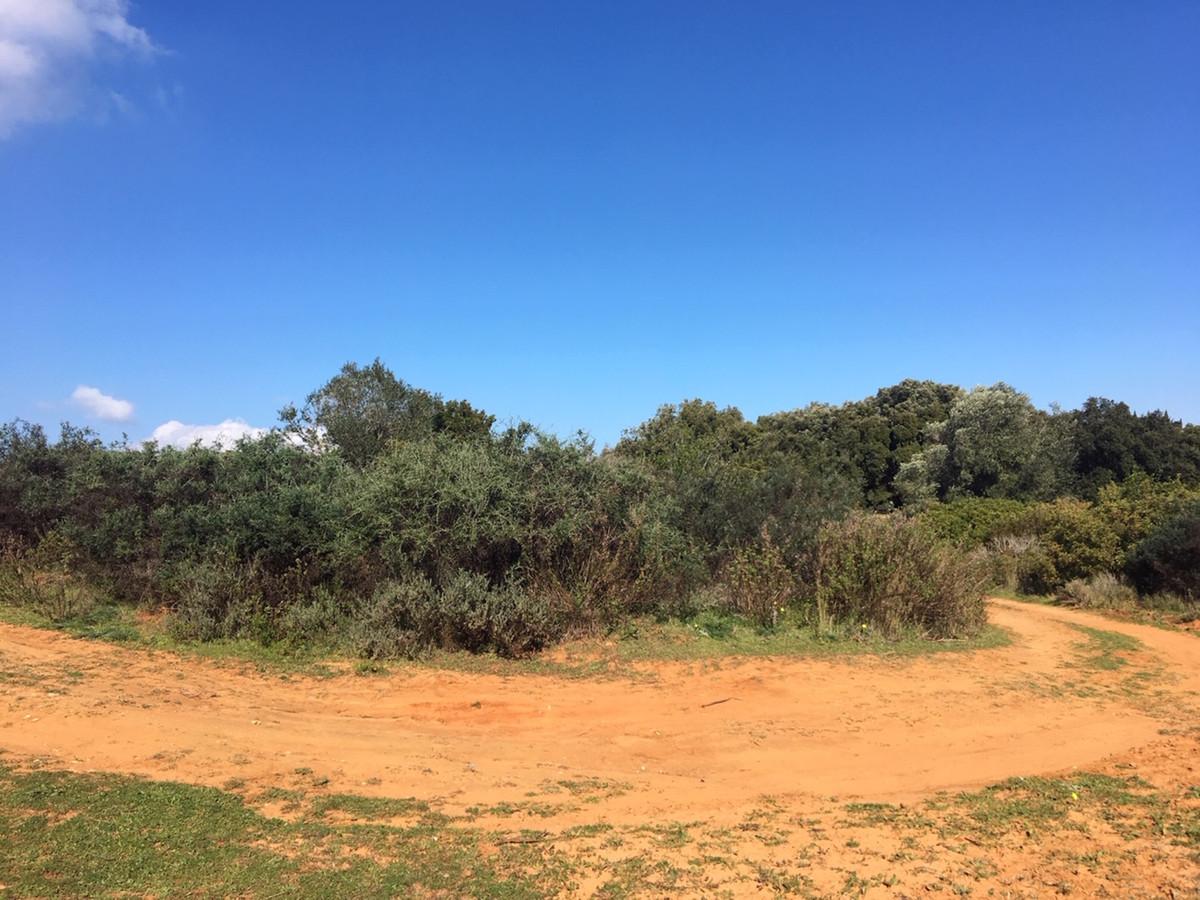 Land, Manilva, Costa del Sol. Garden/Plot 143500 m².  Setting : Country, Close To Town. Ori,Spain