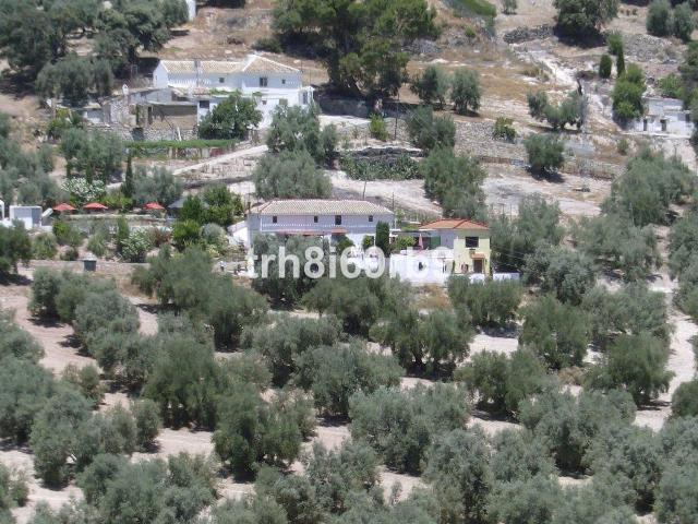 Villanueva De Algaidas Spain