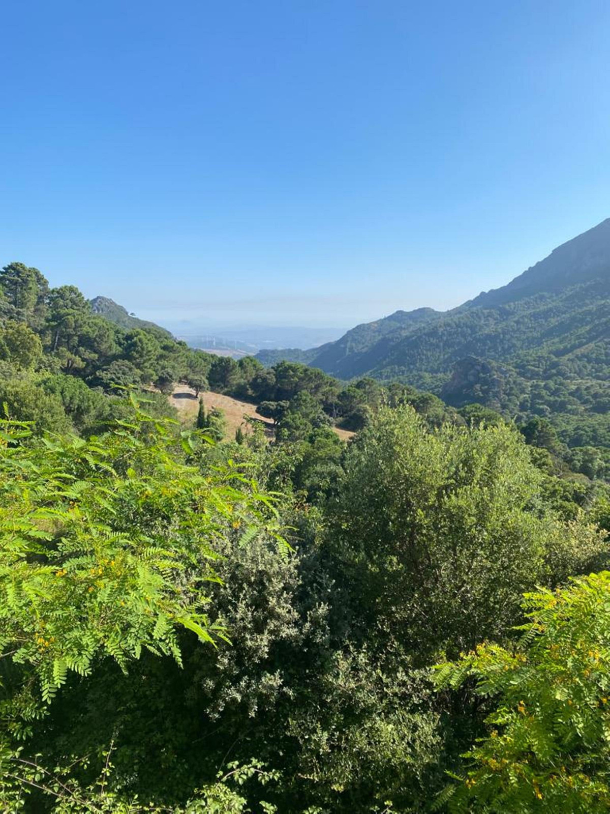 Picture of property for sale in Casares
