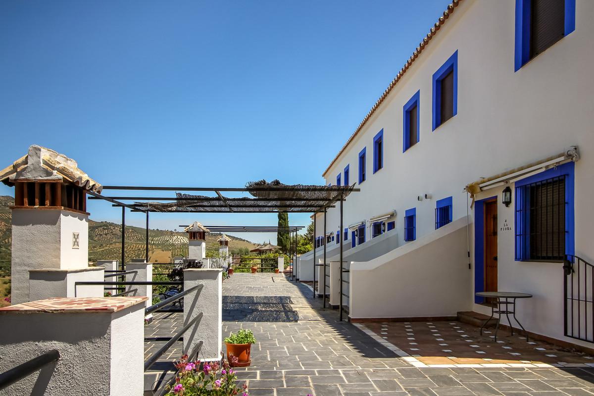 17 bedroom villa for sale guaro
