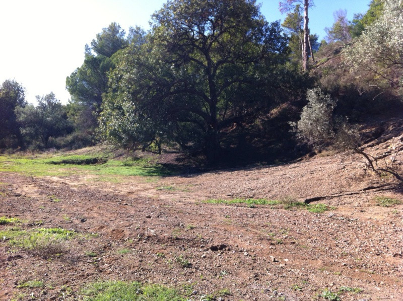 For sale plot of 9.050 m2. in the 1st phase of the urbanization Las Lomas de Mijas, whose use is as ,Spain