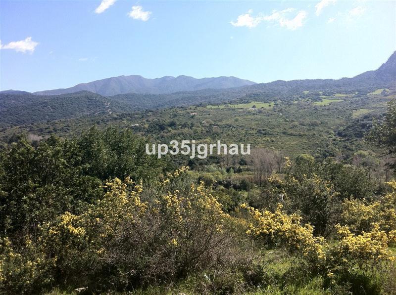 Plot - Land, Gaucin, Costa del Sol. Garden/Plot 360000 m².  Setting : Town, Country, Village, Mounta,Spain