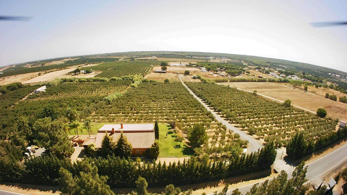 Villa, Finca  en vente    à Calahonda