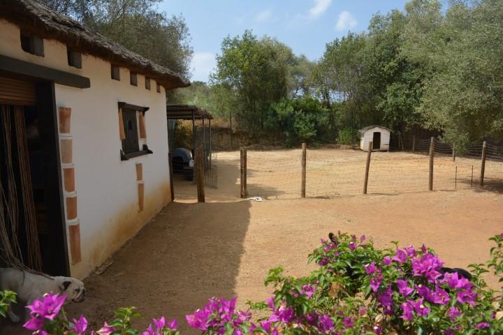 Residential Plot in Las Chapas