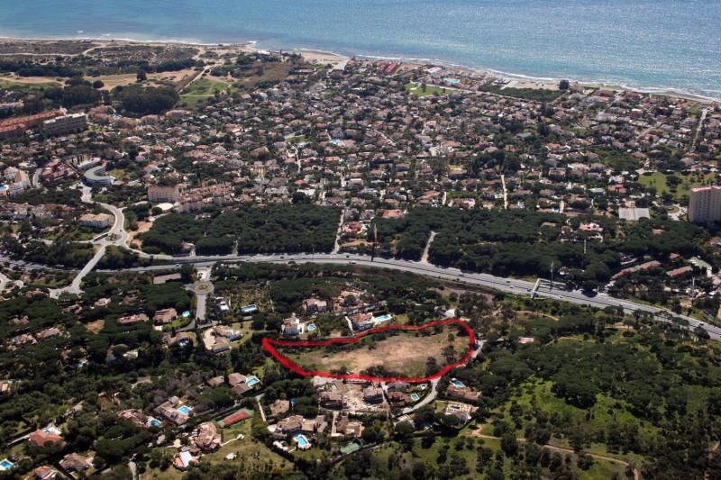 0-bed-Land Plot for Sale in Las Chapas