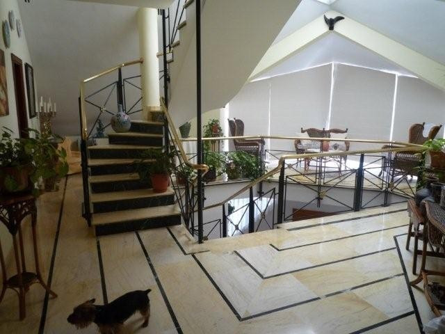 House in Bel Air R711301 3
