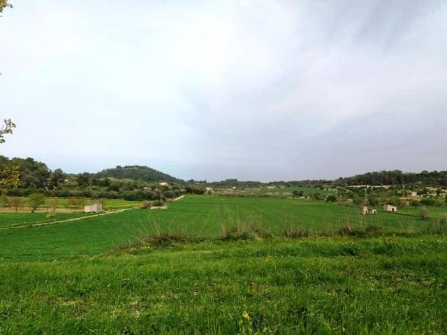 A parcela of 40.689m2 to the south of the Ma-15 between Montuiri and Vilafranca De Bonany. The finca,Spain