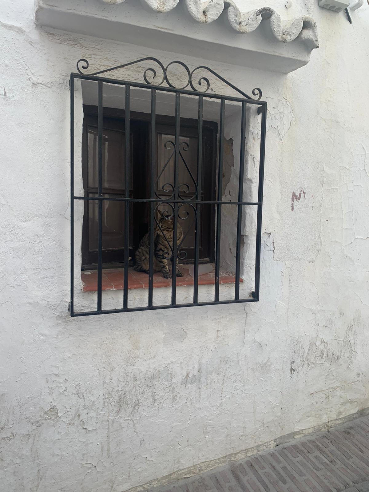 Unifamiliar Adosada 2 Dormitorio(s) en Venta Ojén